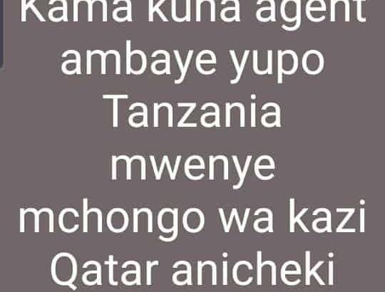 mchongo